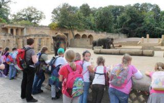 Zooausflug 2011